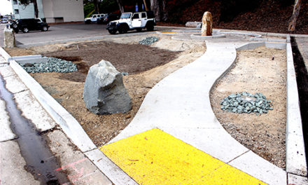 Pocket Park/Rain  Garden To Help  Clean Bay