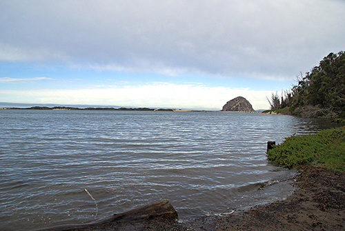 The Natural World King Tides Coming to the Central Coast