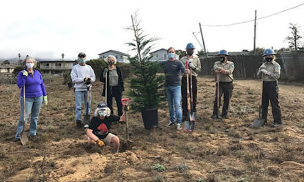 Major Community Tree Planting Project Completed