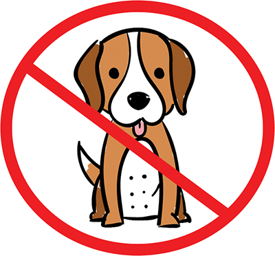 With Kids in School, Dogs Not Welcome