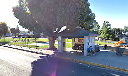 City Taking Bids on Bus Stop Project