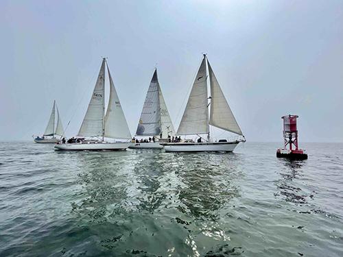 Sailboats racing the Zongo Cup 2021